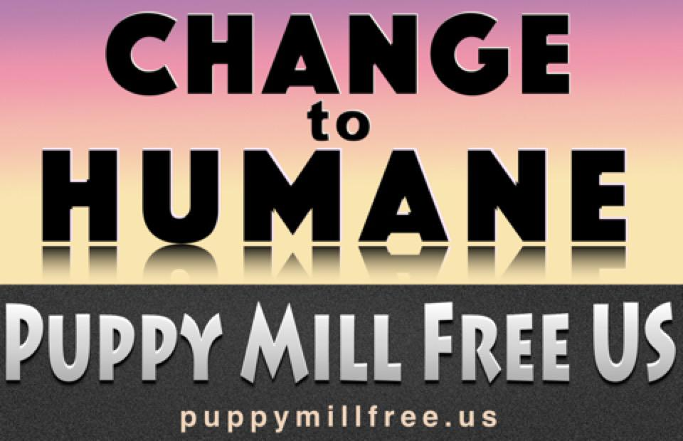 Change to Humane Poster: Sunrise
